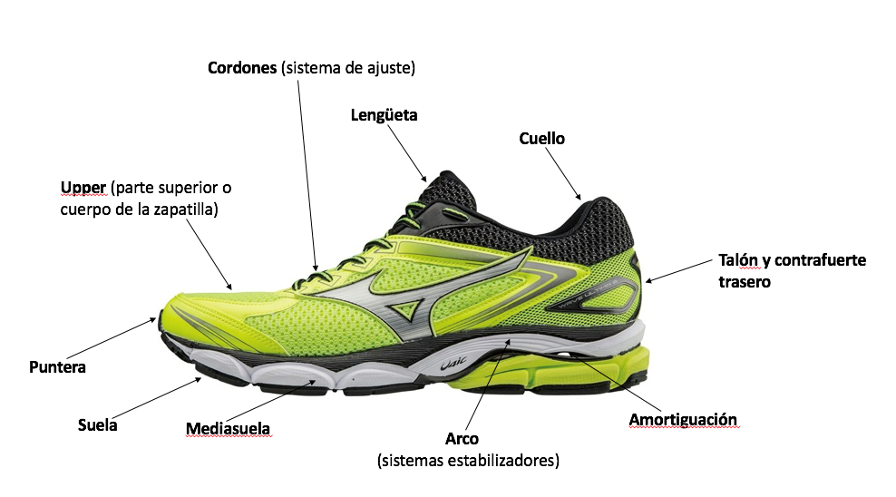 partes-zapatillas-running